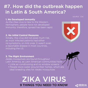 How Did the Outbreak Happen in Latin and South America Infographic